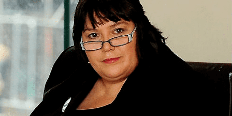 Siân James (politician) Labour MP Sian James And Her Thugs Try To Hide Causes Of South Wales