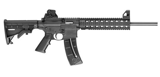 Smith & Wesson M&P15-22