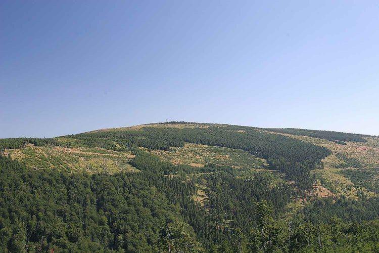 Smrk (Jizera Mountains) httpsuploadwikimediaorgwikipediacommons11