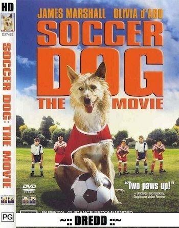 Soccer Dog: The Movie Soccer Dog The Movie 1999 Dual Audio Hindi 720p HDRip 800mb 9xmovies
