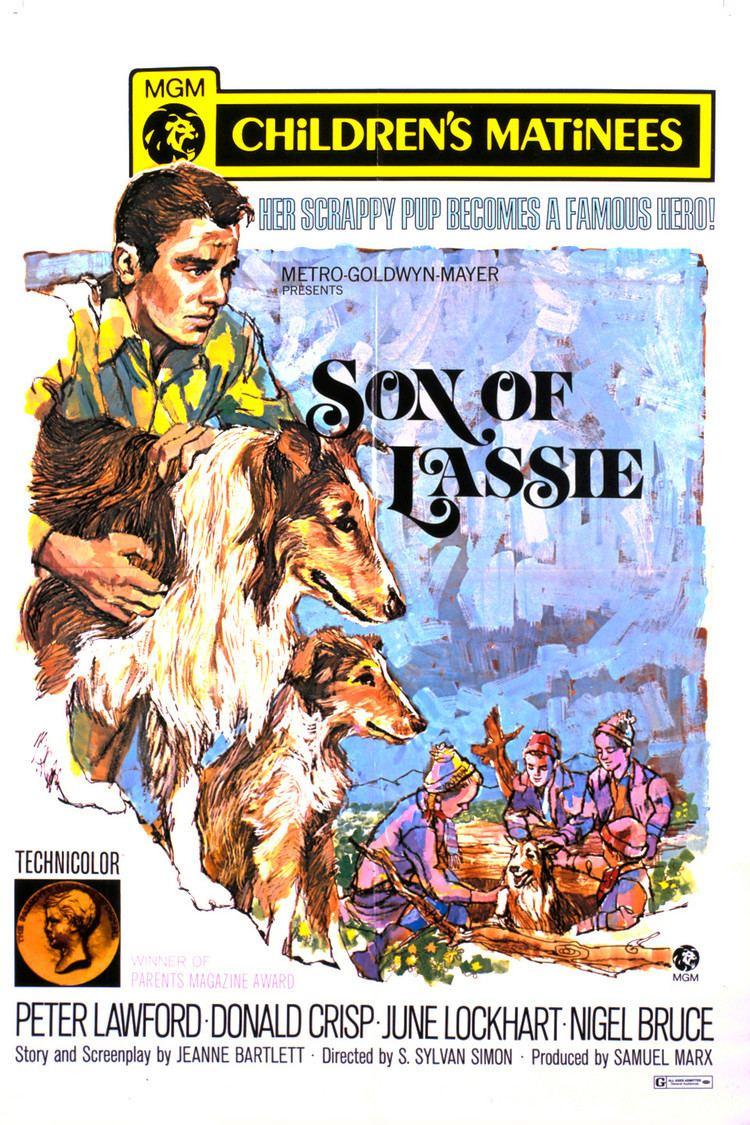 Son of Lassie wwwgstaticcomtvthumbmovieposters1759p1759p