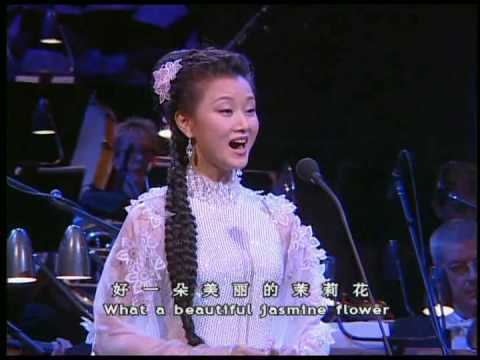Song Zuying Song Zuying Jasmine Flower YouTube