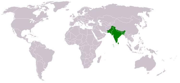 South Asia httpsuploadwikimediaorgwikipediacommons00