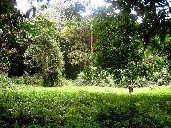 Southeast Sulawesi Beautiful Landscapes of Southeast Sulawesi
