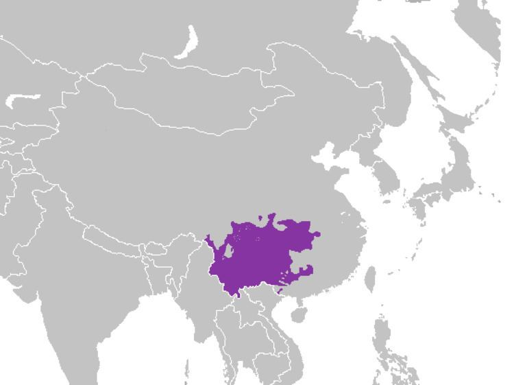 Southwestern Mandarin