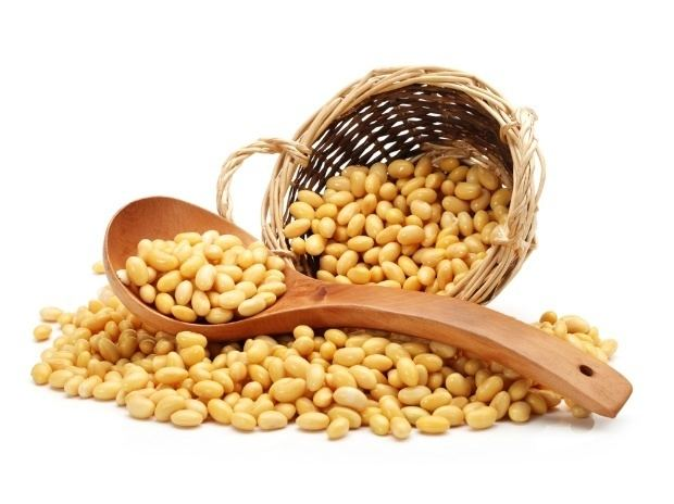 Soybean Soybean output declines to lowest in 11 years Business Standard News