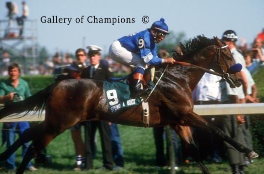 Spend A Buck 1985 Kentucky Derby Spend A Buck 850 Gallery of Champions