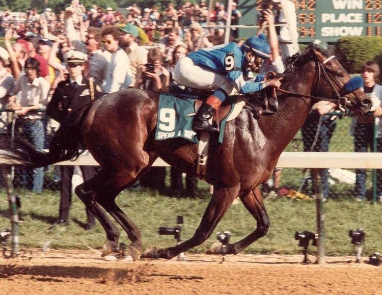 Spend A Buck SPEND A BUCK Kentucky Derby 1985 YouTube