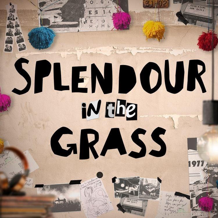 Splendour in the Grass httpslh6googleusercontentcomwlxQ9fgwtk8AAA