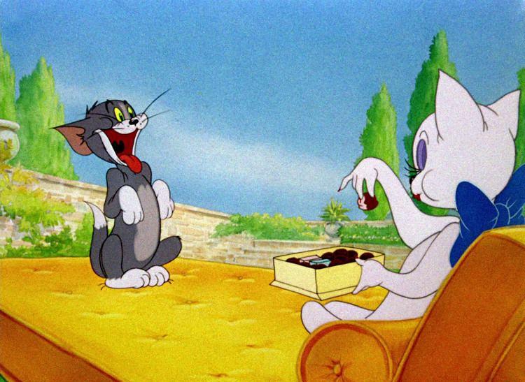 Springtime for Thomas Tom Jerry Pictures Springtime for Thomas