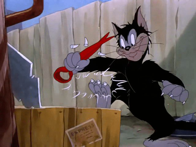 Springtime for Thomas Springtime for Thomas 23 Tom and Jerry Cartoons