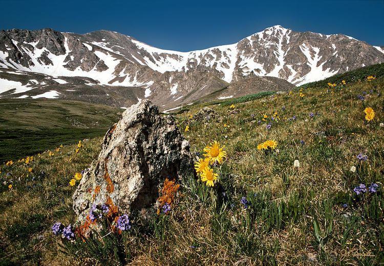 Springtime in the Rockies Springtime In The Rockies Photograph by Joe Bonita