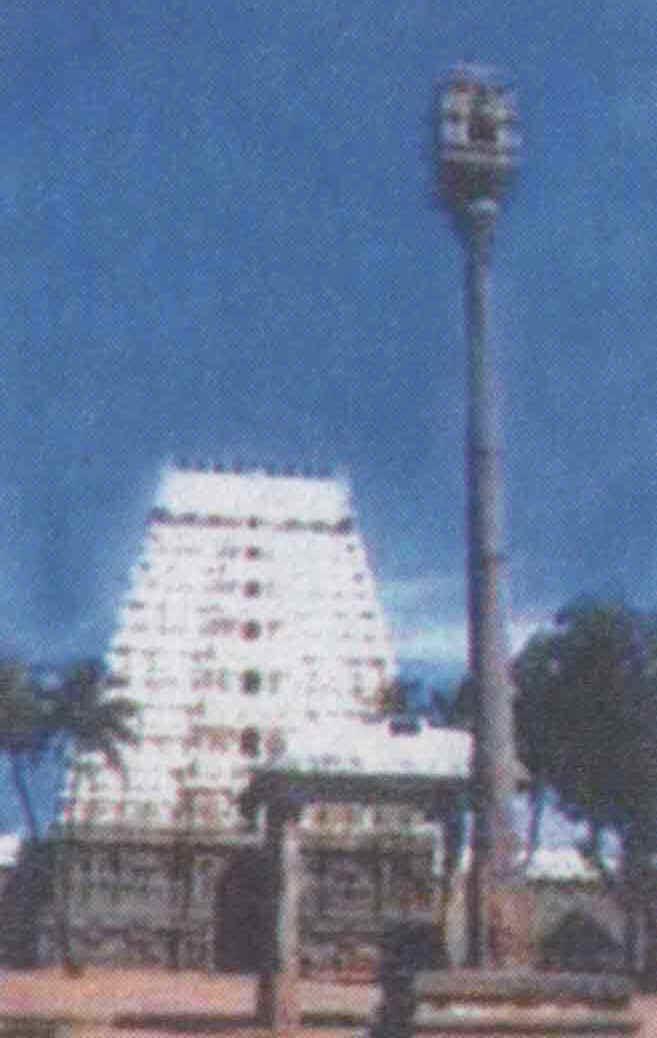 Srimushnam Festival of Srimushnam