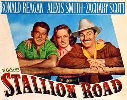 Stallion Road Lauras Miscellaneous Musings Tonights Movie Stallion Road 1947