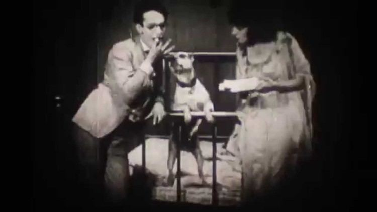 Step Lively (1917 film) STEP LIVELY YouTube