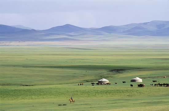 Steppe steppe grassland Britannicacom