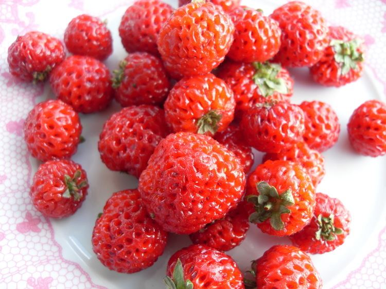 Strasberry Ingredient of the Week Strasberry Would Like to Eat