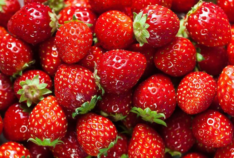 Strawberry Strawberry Facts Fun Facts About Strawberries