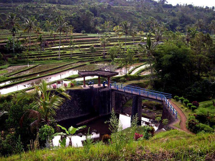 Subak (irrigation) Cultural Landscape of Bali Province the ltemgtSubakltemgt System as a