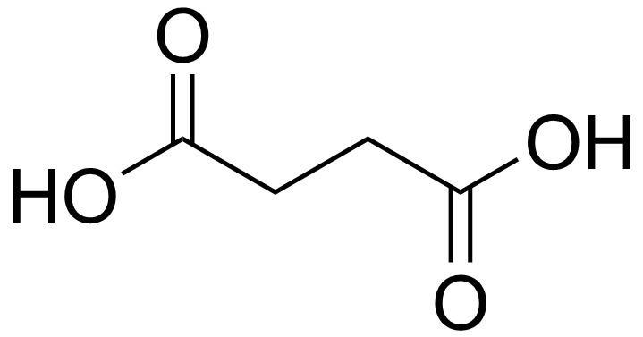 Succinic acid FileSuccinic acidpng Wikimedia Commons