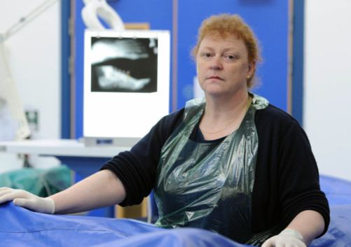 Sue Black (forensic anthropologist) Interview Sue Black professor The Scotsman