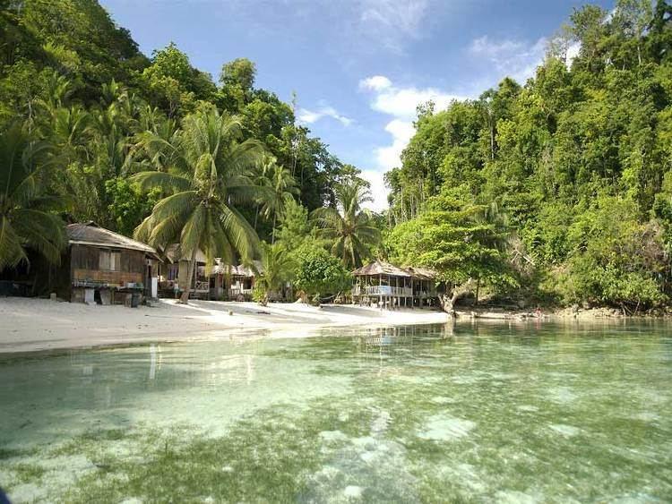 Sulawesi httpswwwnusadinusacoukuploadsimg17galler