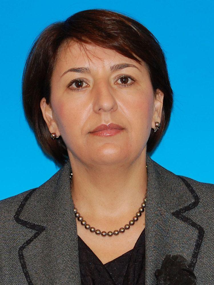 Sulfina Barbu STRUCTURA PARLAMENTULUI ROMNIEI 20082012