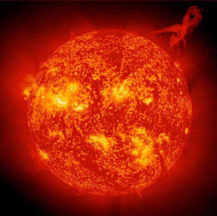 Sun Sun Fact Sheet