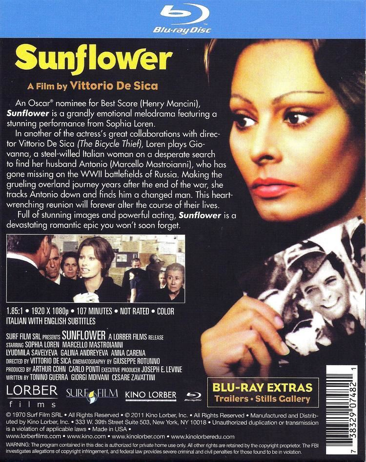 Sunflower (1970 film) Sunflower Bluray