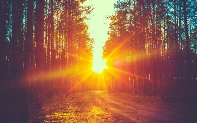 Sunlight Isha USA Blog Be Breathe Blossom How Summer Sunlight Keeps You