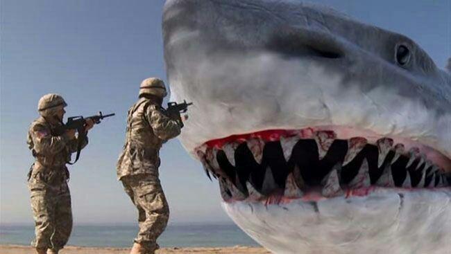 Super Shark Super Shark Horror Amino