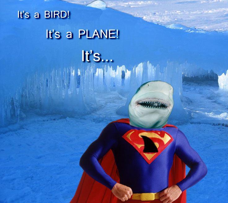 Super Shark super shark Two Geeks One Blog