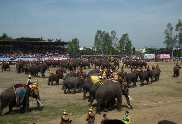 Surin, Thailand Festival of Surin, Thailand