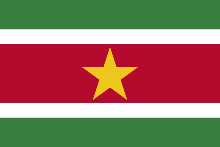 Suriname at the 2014 Summer Youth Olympics