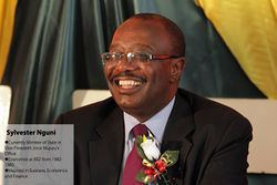 Sylvester Nguni About Sylvester Nguni Pindula Local Knowledge