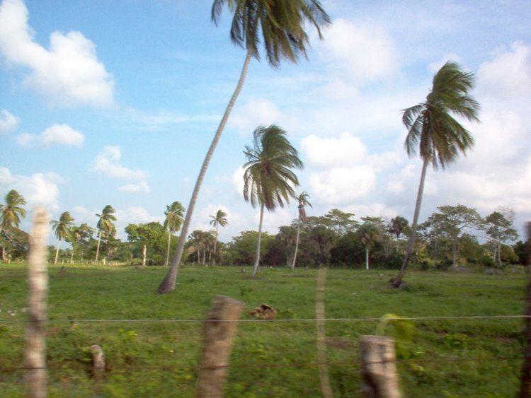 Tabasco Beautiful Landscapes of Tabasco