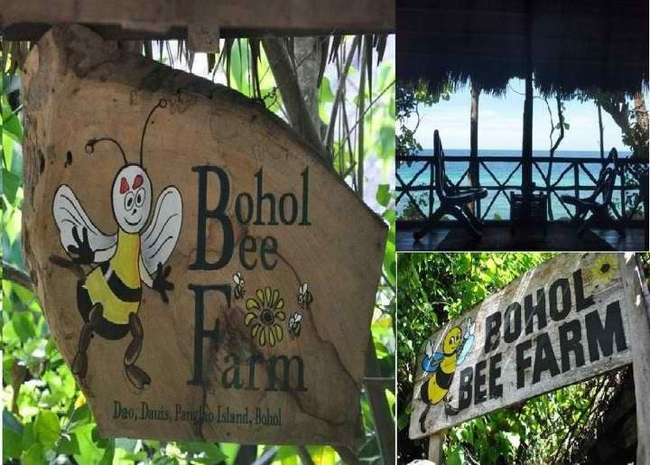 Tagbilaran Tourist places in Tagbilaran