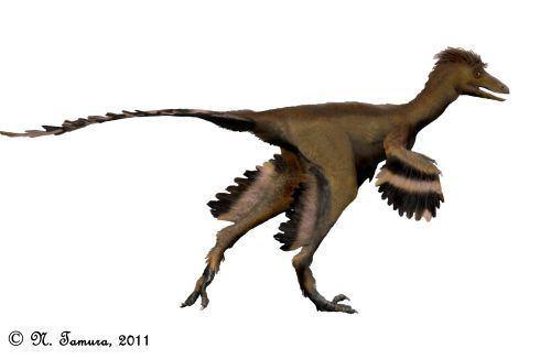 Talos (dinosaur) Paleoexhibit Talos sampsoni a new troodontid from Utah