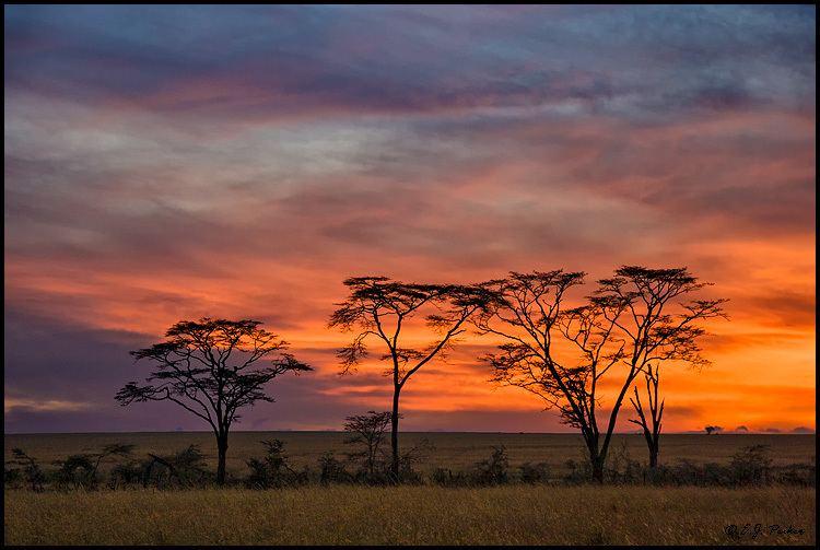Tanzania Beautiful Landscapes of Tanzania