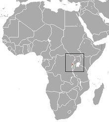 Tarella shrew httpsuploadwikimediaorgwikipediacommonsthu