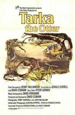 Tarka the Otter (film) Tarka the Otter film Wikipedia