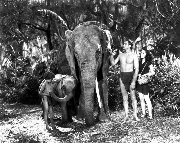 Tarzan Finds a Son! Tarzan Finds a Son