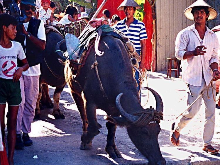 Tayabas Festival of Tayabas