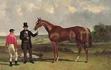 Teddington (horse) httpsuploadwikimediaorgwikipediacommonsthu