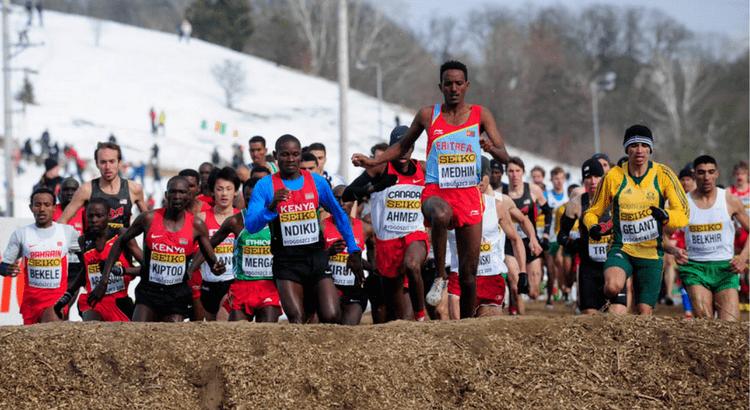 Teklemariam Medhin Meet Eritrea39s Teklemariam Medhin LetsRuncom39s Athlete