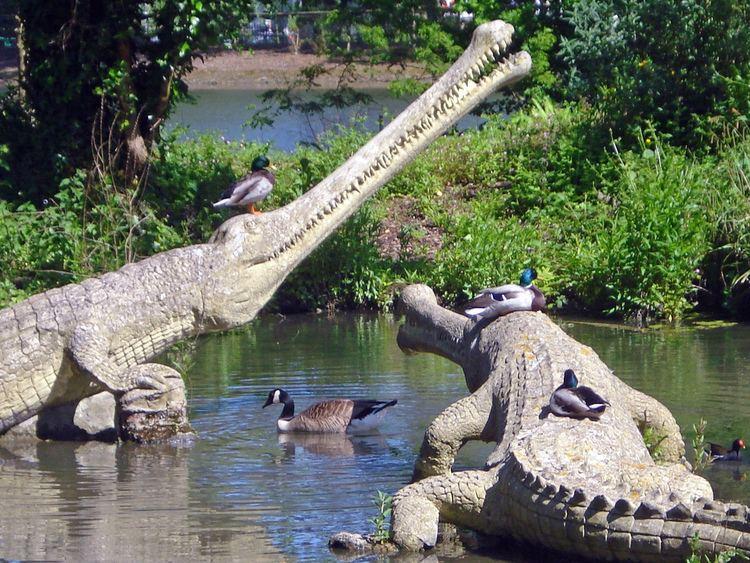 Teleosaurus Teleosaurus These Jurassic crocodiles in Crystal Palace bo Flickr
