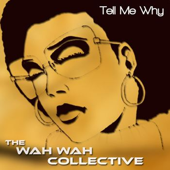 Tell Me Why (Wah Wah Collective song)