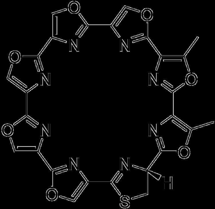 Telomestatin httpsuploadwikimediaorgwikipediacommons77