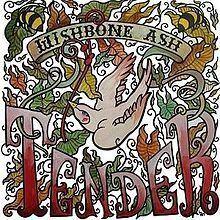 Tender (album) httpsuploadwikimediaorgwikipediaenthumb5