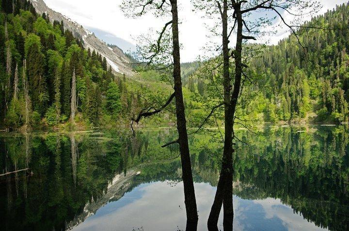 Tengiz Tarba Ritsa Lake Abkhazia by Tengiz Tarba Pixdaus